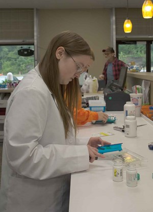 Makayla McNew counts pills to fill a prescription at her weekend job as a pharmacy intern at a Corbin pharmacy. A Laurel County High School alumnae, McNew is in her first year at University of Kentucky's pharmacy school.